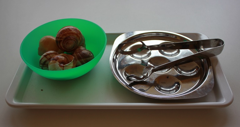 La pince et les escargots